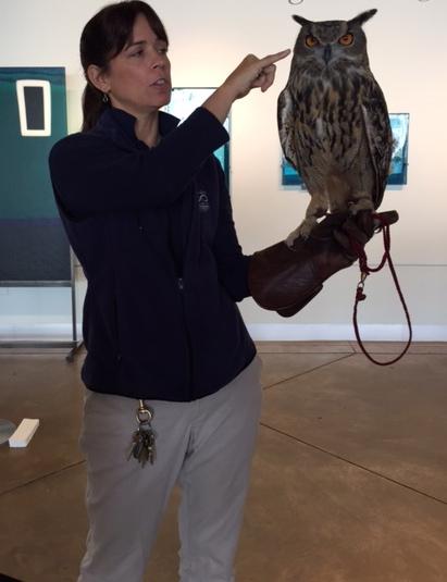 A Point Defiance Zoo & Aquarium bird ambassador during the 2014 Bird Lovers' Weekend.